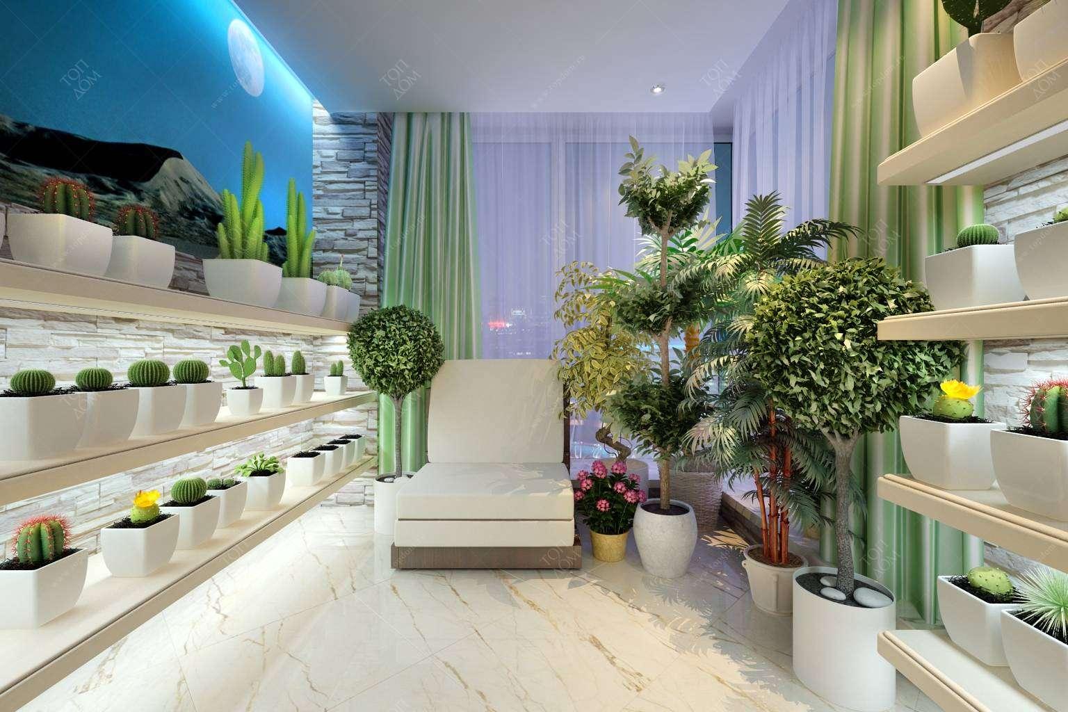 картинки с растениями в квартире спальников автомобили просторах